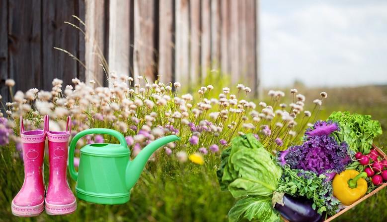 Alles für Garten und Freizeit